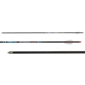 Avalon Hybrid Carbon Arrow